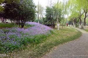 武汉出发到木兰湖木兰山旅游报价2日游行程
