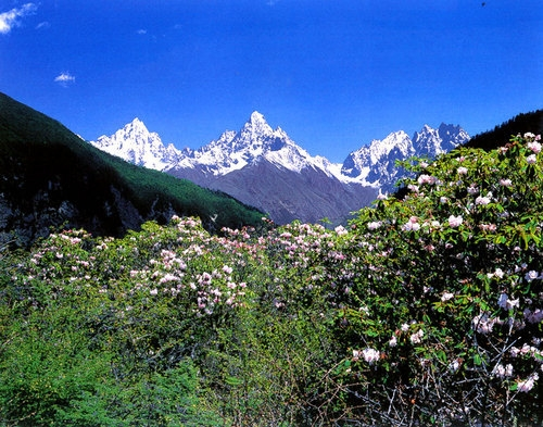 甘孜州康定木格措海拔多高 有高原反应吗 成都去木格措3日游