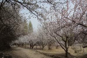 【臻品纯玩团】穿越吐鲁番:葡萄沟、库木塔格沙漠一日游