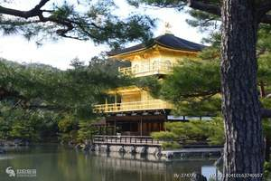 太原到日本旅游|和风物语|日本精彩双飞6日游
