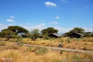 南非旅游线路报价-动物大迁徙肯尼亚狂野11日埃塞俄比亚航空