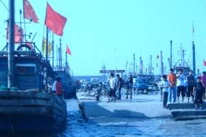 天津到塘沽旅游线路_滨海航?#29976;?#30028;_出海打渔一日游