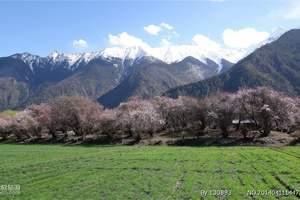 北京到西藏旅游:南迦巴瓦映桃红 布达拉宫 桃花沟卧飞9日