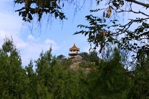 天津到北京颐和园旅游价格_天津到颐和园旅游_百望山赏枫一日游