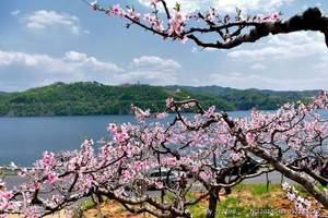 五一长春周边旅游去哪好,看丹东河口桃花+青山沟2日游