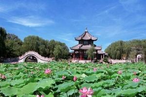 天津到河北旅游景点推荐_西胜沟_莲花池汽车两日游