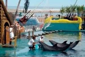 天津到北戴河旅游线路_乐岛海洋公园一日游