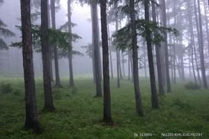 伊春自驾游  五营森林公园+汤旺河石林伊春绿色海洋旅两日游