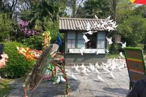 济南出发南京、扬州、镇江纯玩三日游_济南出发旅游团