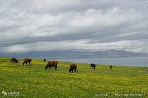 2018年新疆北疆伊犁全景9日游跟团旅游多少钱_性价比高路线
