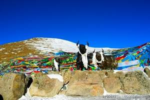 拉萨/日喀则/珠峰/山南/朗县/加查/林芝/西藏全景7日游