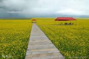 【赏花线路】广元到街子古镇、海棠花基地一日游|广元周边游线路