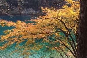青海湖、金色同仁、九色甘南、阿坝、红原、九寨沟、黄龙摄影八日