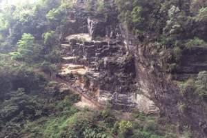 广元到重庆有多远|广元去重庆武隆仙女山、芙蓉洞动车往返3日游