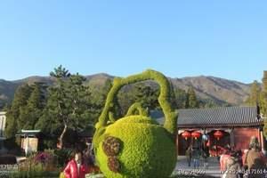 秦皇岛到北京香山赏红叶一日游直通车 香山红叶一日游