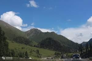 伊犁旅游线路--伊犁草原鲜花美景7日汽车摄影休闲游