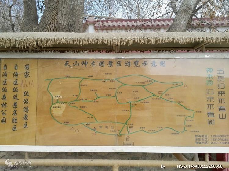 神木园导览图