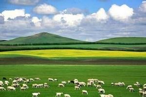 九江旅行社去内蒙古旅游跟团-九江到呼和浩特希拉穆双卧7日游
