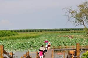 南沙旅游南沙湿地公园(含游船)、水鸟世界生态园、十九涌一日游