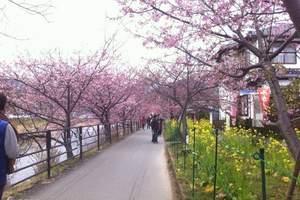 长春到【武汉】宜昌、三峡、重庆双卧8日 去武汉赏樱花