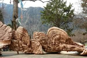 广元到西藏拉萨、林芝6日游【纯玩】|去西藏旅游的注意事项