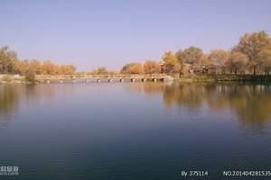 喀什民俗风情+巴楚红海胡杨林+达瓦昆沙漠三日游