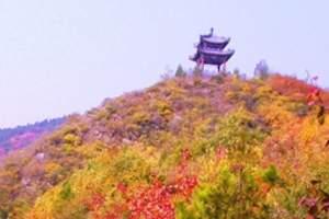 天津到北京世界公园一日游_北京世界公园_北京旅游
