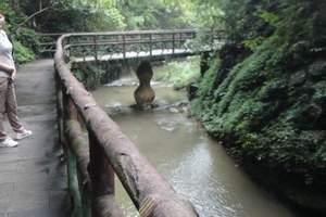 长沙到株洲酒埠江、仙人桥一日游(每周六发班)