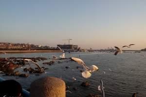 青岛旅游一日游特价团 特色景点海边风光亲子游