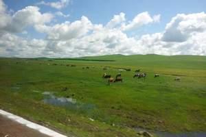 【定制游内蒙】呼和浩特、草原、沙漠、成陵4日游