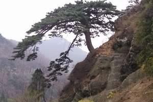 山东旅游 好客山东精华线路  济南到五岳之尊泰山经典一日游