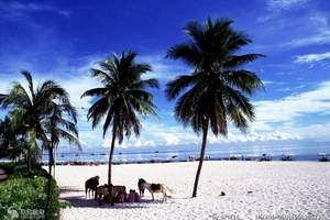长春旅行社泰国旅游 萨瓦迪卡【金钻沙美岛】泰国8日游