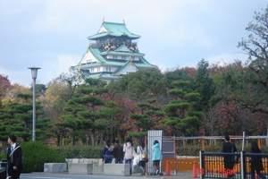 【NH·全日空】<日本本州全景7日游>东京自由人1日+温泉