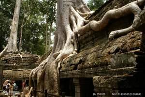 柬埔寨吴哥一地6天5晚超值游(吴哥三日券,四星住宿)
