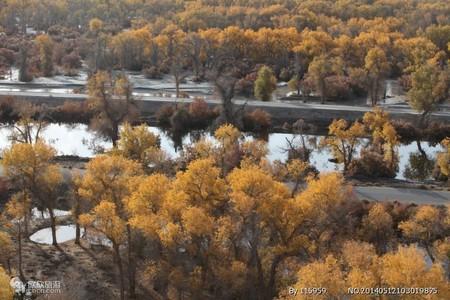 新疆南疆胡楊林庫車峽谷千佛洞沙漠公路和田喀什市內卡湖單飛八日