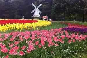 西双版纳热带一日游 热带花卉园+野象谷 纯玩含门票接送周边游