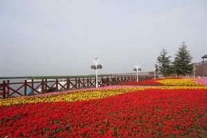 七里海鸟岛