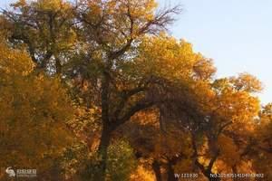 新疆南疆喀什胡杨林-沙漠-峡谷风光9日游-2人即可天天发团