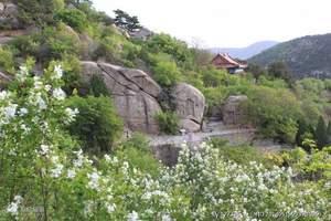 阜新海棠山