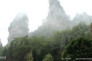 ※【暑期特惠】森林公园,袁家界,杨家界,天子山二天一晚游