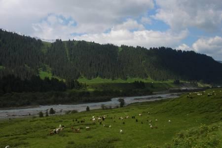 新疆乌鲁木齐、天池天池、可可托海、喀纳斯、吐鲁番双飞八日游