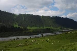 乌鲁木齐出发到伊犁那拉提草原火车双卧四日|新疆到伊犁草原旅游
