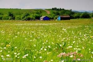草原-天天发团  满洲里口岸、根河湿地、西山公园、祭敖包5日