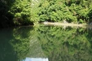 夏季天水周边去哪里好玩?就去康县阳坝梅园沟汽车2日游