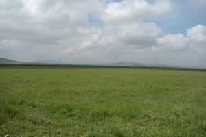 哈尔滨、呼伦贝尔草原 满洲里  阿尔山 越野车穿越草原8日游