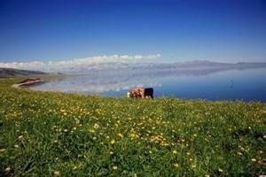 青岛到新疆旅游推荐_青岛到新疆卧飞五日游四大沙漠之一