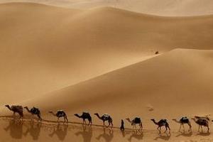 九江出发到甘肃兰州、敦煌、玉门关、莫高窟、嘉峪关城单飞7日游