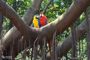 从南昌到长隆四日游 长隆欢乐世界、长隆动物园双卧4日