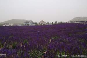 郑州到嵖岈山一日游  郑州周边一日游