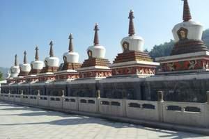 西宁当地出发—青海湖、塔尔寺2晚3日游